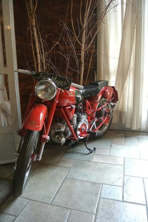 Tarantola : moto all'interno della sala