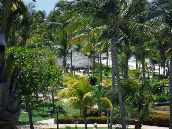 Sol Cayo Coco: Sol AMAZING tropical grounds