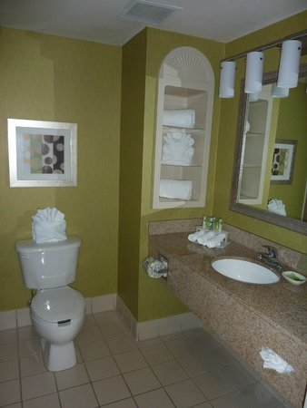 Holiday Inn Express Hotel & Suites New Tampa I-75 Bruce B. Downs : Salle de bains