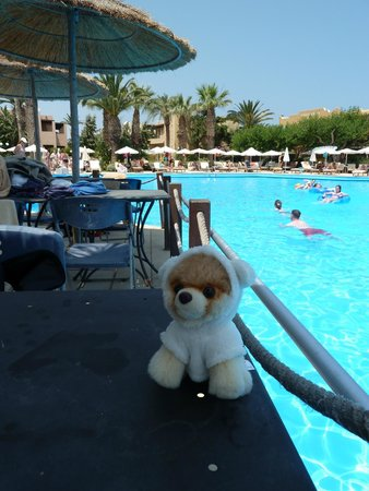Aquila Rithymna Beach Hotel : Boo at the Pool