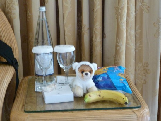 Aquila Rithymna Beach Hotel : Boo's welcome package