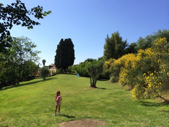 Borgo Grondaie : Some of the beautiful gardens at BG