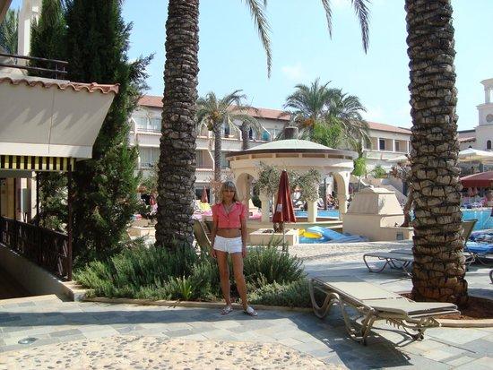 Napa Plaza Hotel: У бассейна