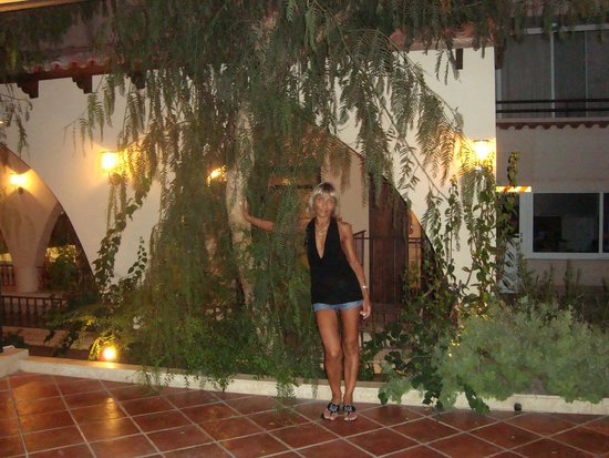Napa Plaza Hotel: Около ресторана отеля