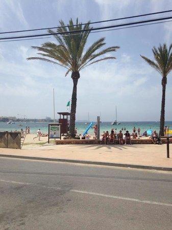 Bellamar Hotel: Beach just across the road