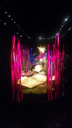 Chihuly Garden and Glass: You have to walk around this numerous times. Trust me