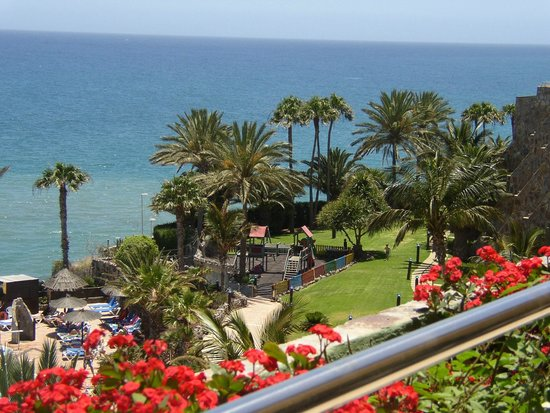 BlueBay Beach Club: View of gardens from room 508