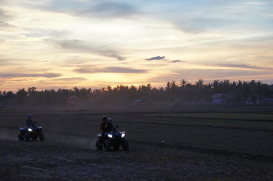 Quad Adventure Cambodia Siem Reap: Quads riding off after the sunset