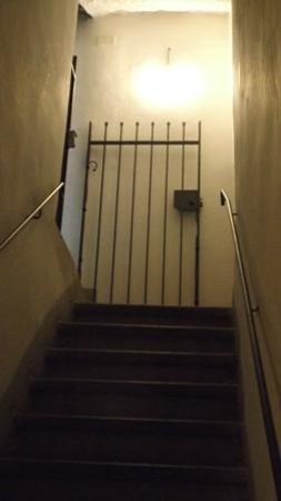 Emily's Rooms: Entrance to the front door of basement apartment