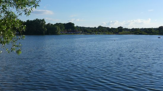 Lackford Lakes: Looking across to sailing club on other side of one of the lakes....