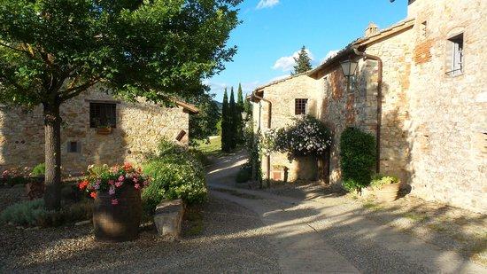 View from Borgo Argenina