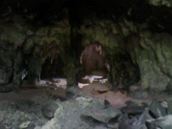 Borikua Tours: Cave crawling
