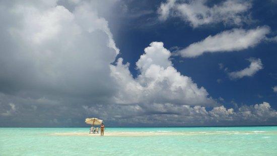 Happy Life Maldives Lodge : Private sandbank tour