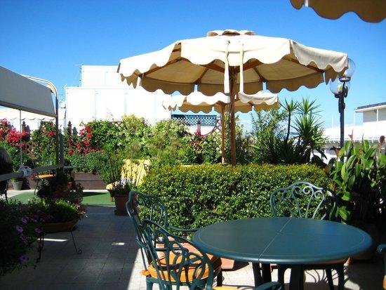 Marcella Royal Hotel: Rooftop garden , excellent