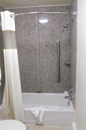 Alpine Motel: new tub, shower area, toilet and flooring