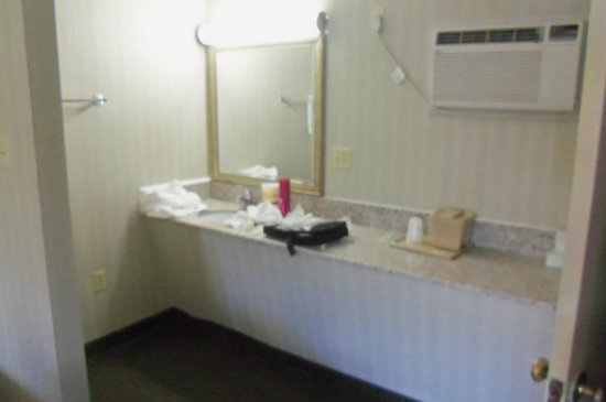 Alpine Motel: sink outside bath area, lots of counter space, a/c on wall