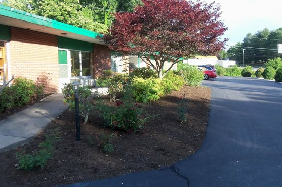 Alpine Motel: nice landscaping near office