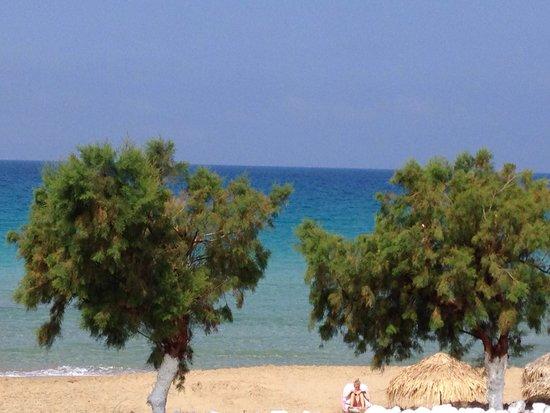 Arkasa Bay Hotel: Strand Agios Nikolaios, 10 Gehminuten entfernt und wunderschön!