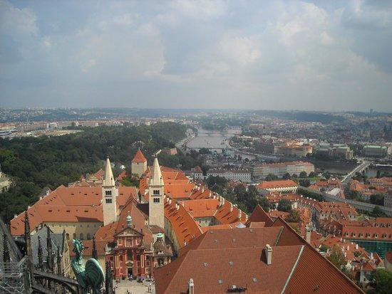St. Vitus Cathedral: Вид с башни