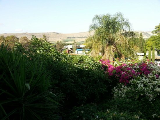 Arbel Guest House Shavit Family: View from our balcony