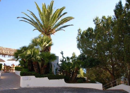Veraclub Scoglio della Galea Resort &spa: Рядом с баром