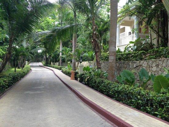 Luxury Bahia Principe Cayo Levantado: road/walk way