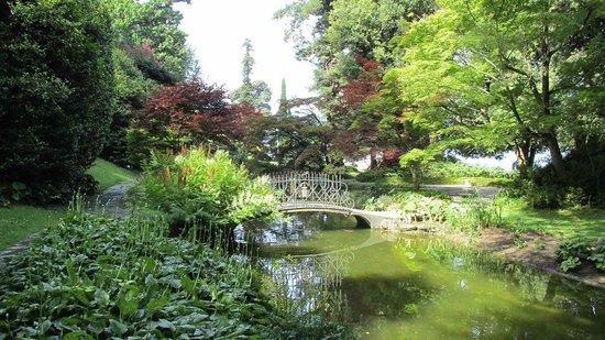 Giardino orientale foto di i giardini di villa melzi for Laghetto i giardini