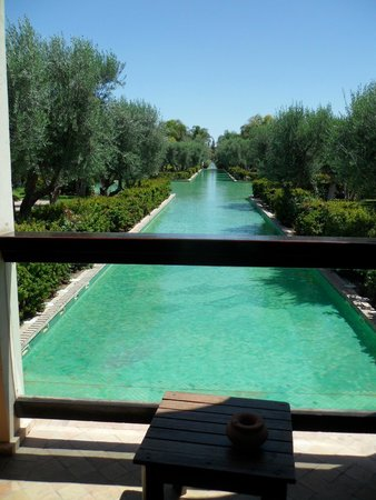 Club Med Marrakech La Palmeraie : Les jardins
