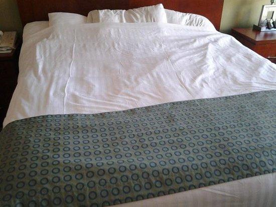 Aquarius Casino Resort: Bed