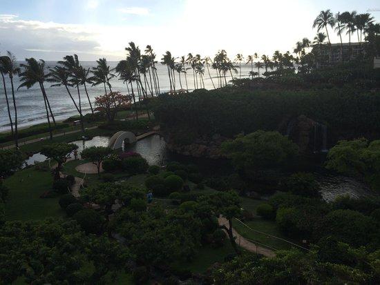Hyatt Regency Maui Resort and Spa: View from room