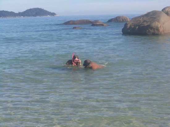 Lopes Mendes Beach : Mergulho em Lopes Mendes