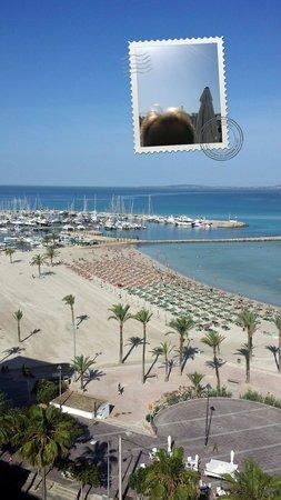 whala!beach : Aussicht von der Dachterasse