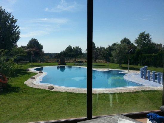 Los Nogales: piscina exterior