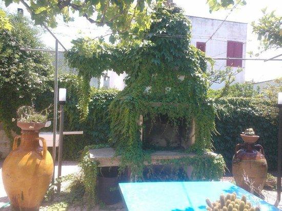 B&B Arcona : il giardino