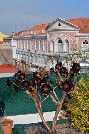 Hotel Nova Sintra: View from hotel terrace