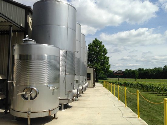 Beachaven Vineyards & Winery: On the tour
