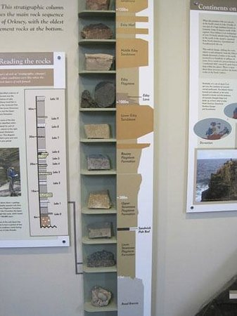 Burray Village, UK: Display in the Orkney Fossil and Heritage Centre