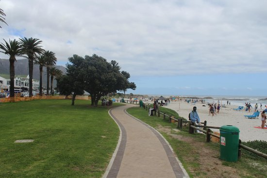 Camp's Bay Beach: Jardins