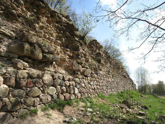 Gdov, Russland: Руины Гдовской крепости