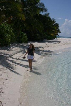 Lily Beach Resort & Spa : Beach