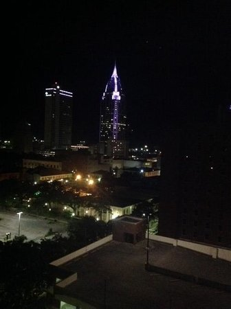 Holiday Inn - Mobile Downtown/Historic District : View from the 15th floor