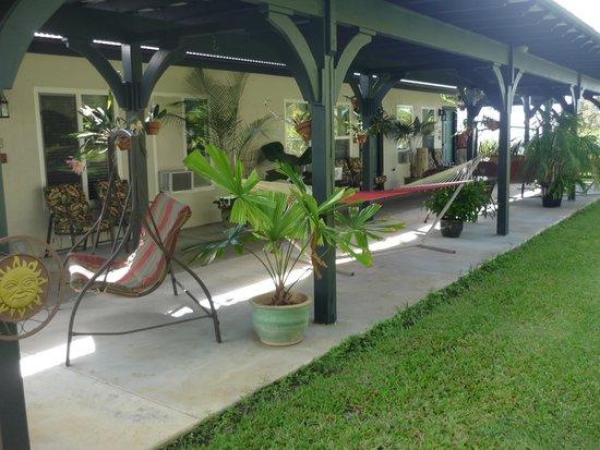 Island Goode's: outdoor area