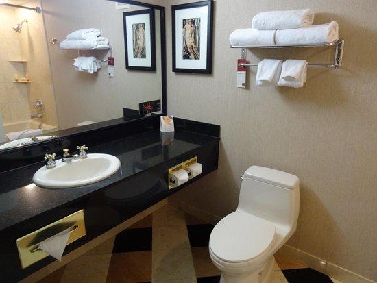 New York - New York Hotel and Casino: Bathroom