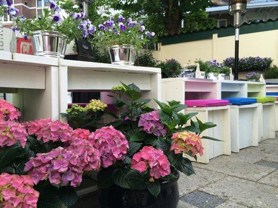 Hotel Mimosa: Gezellig ontbijt op het terras