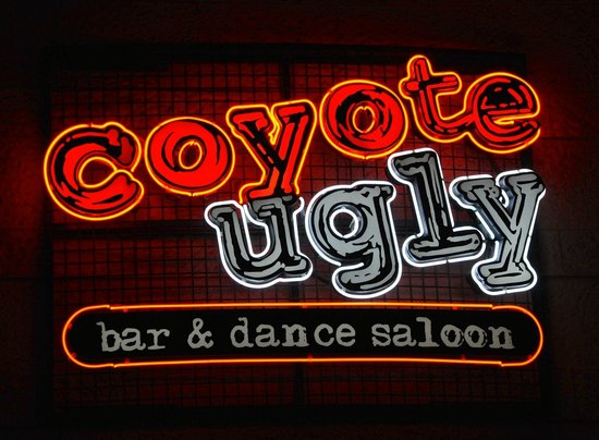 New York - New York Hotel and Casino : Coyote Ugly - at NY NY