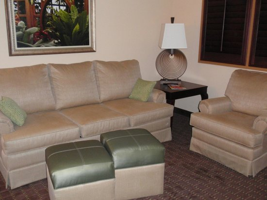 Embassy Suites by Hilton Orlando Lake Buena Vista South: Living Room area