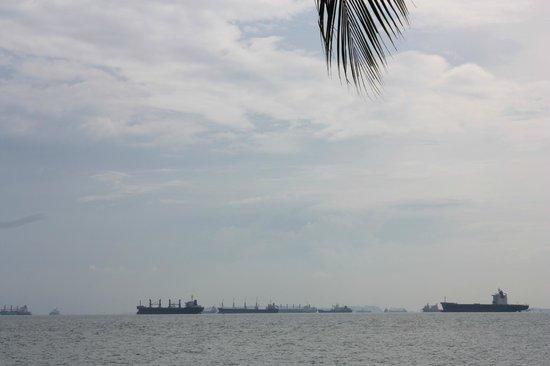 Grand Mercure Singapore Roxy: пляж недалеко от отеля (не для купания!)