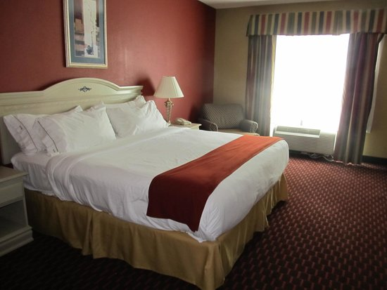 Holiday Inn Express Hotel & Suites London: King bed room 203