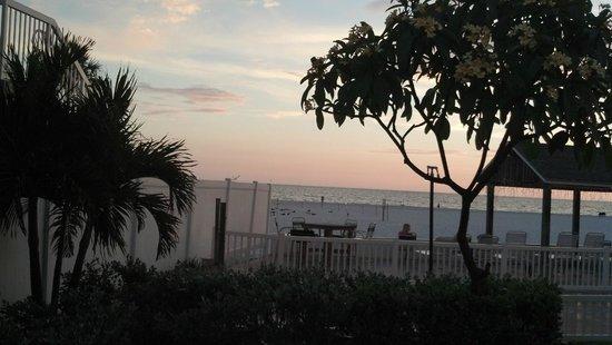 Bon Aire Resort: Beach