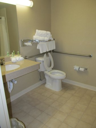 Holiday Inn Express Hotel & Suites London : Toilet Room 203